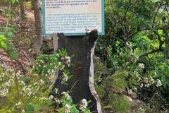 gradina-botanica-creta-1