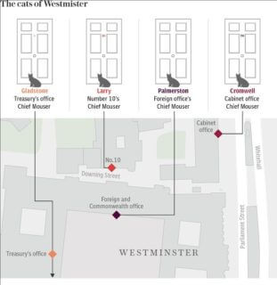 the-cats-of-westminster