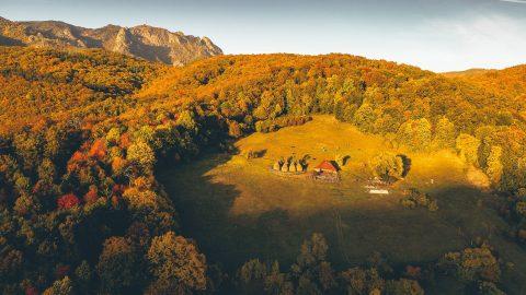 Valea Oltului foto Dragoș Asaftei