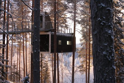 The Cabin, Tree Hotel, Sweeden