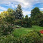 10 lucruri surprinzătoare despre Grădina Botanică din Bucureşti