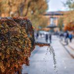 3 zile în Provence | Aix-en-Provence