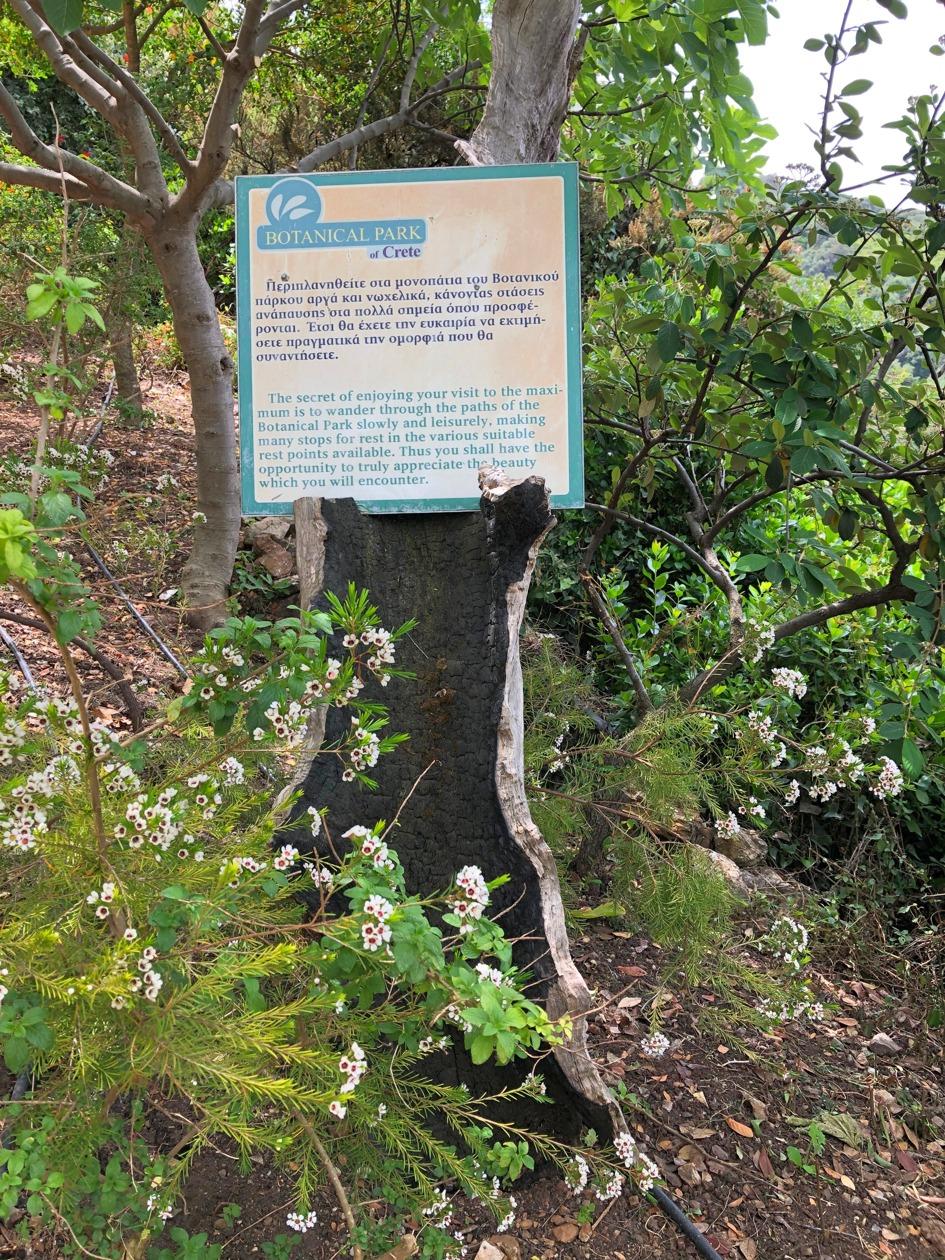 gradina botanica creta