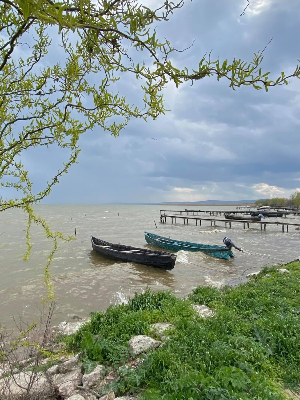 sarichioi malul lacului razim